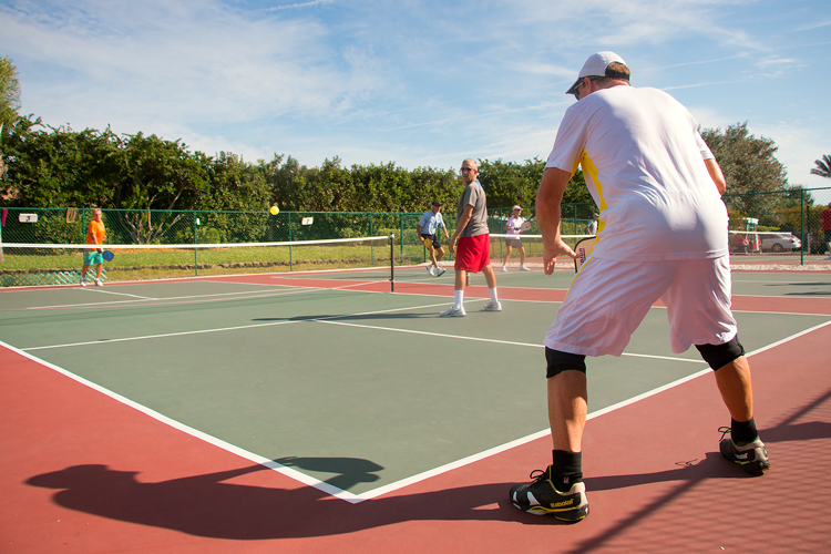 pickleball resize